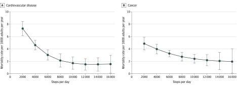 Jak 10000 (10k) Kroków Dziennie Ratuje Ci Życie? (ile to kilomentrów (km) i kalorii (kcal))   efekty + spalone kalorie